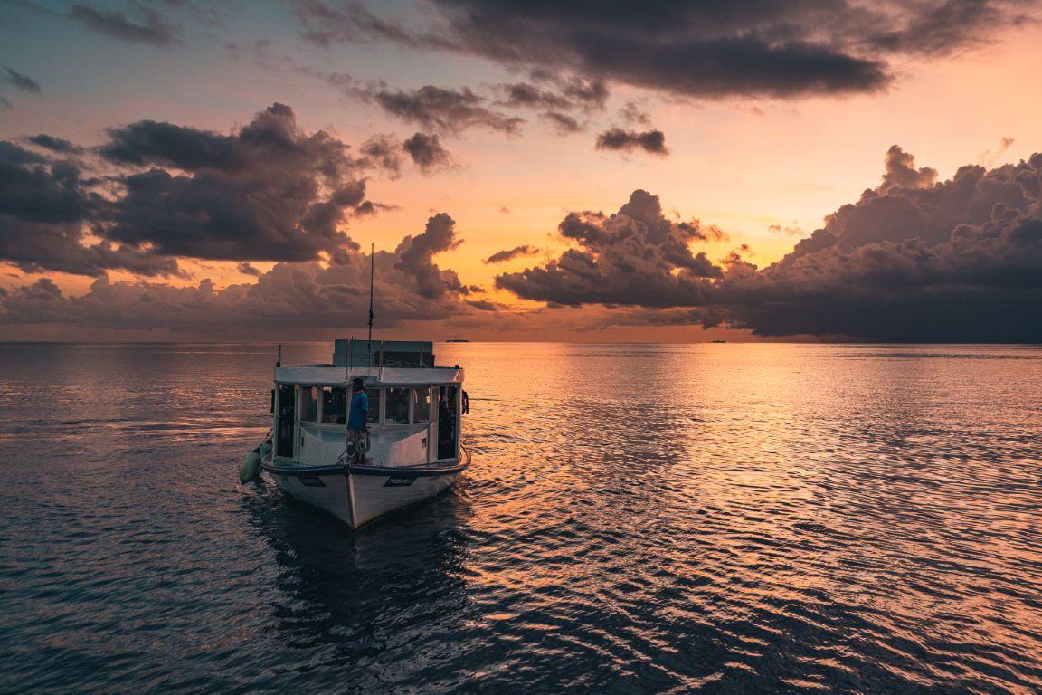 nautilus-maldives-day1-021-20200823-(c)JohannesRadlwimmer (Mittel)
