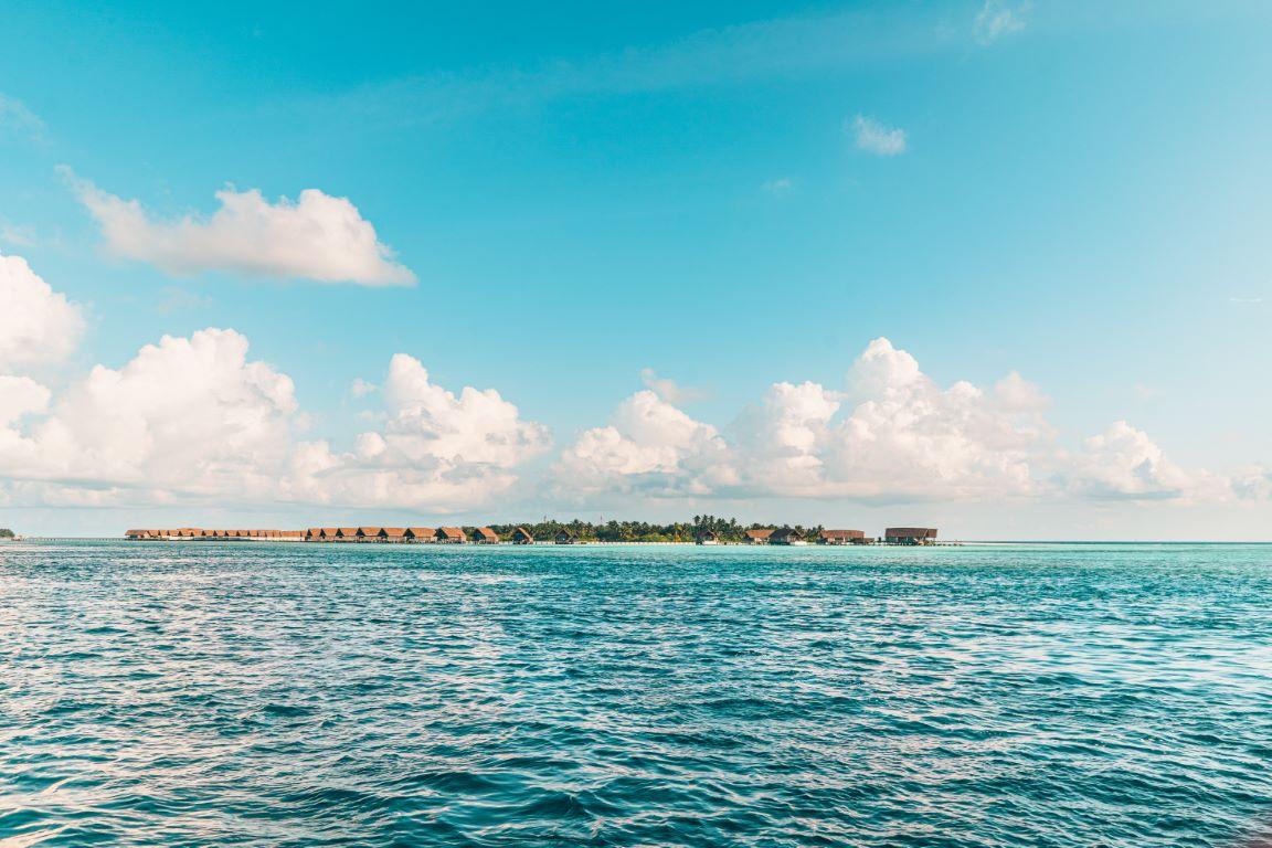 nautilus-maldives-day2-009-20200824-(c)JohannesRadlwimmer (Mittel)