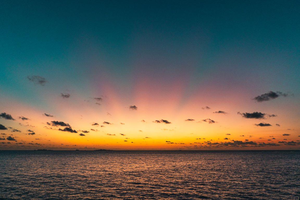nautilus-maldives-day2-027-20200824-(c)JohannesRadlwimmer (Mittel)