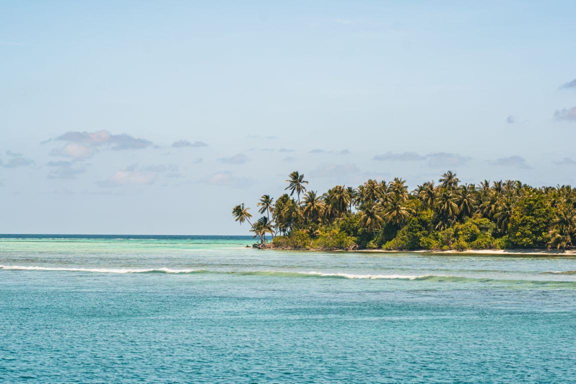 nautilus-maldives-day3-022-20200825-(c)JohannesRadlwimmer (Mittel)