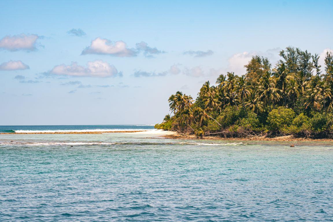 nautilus-maldives-day3-026-20200825-(c)JohannesRadlwimmer (Mittel)