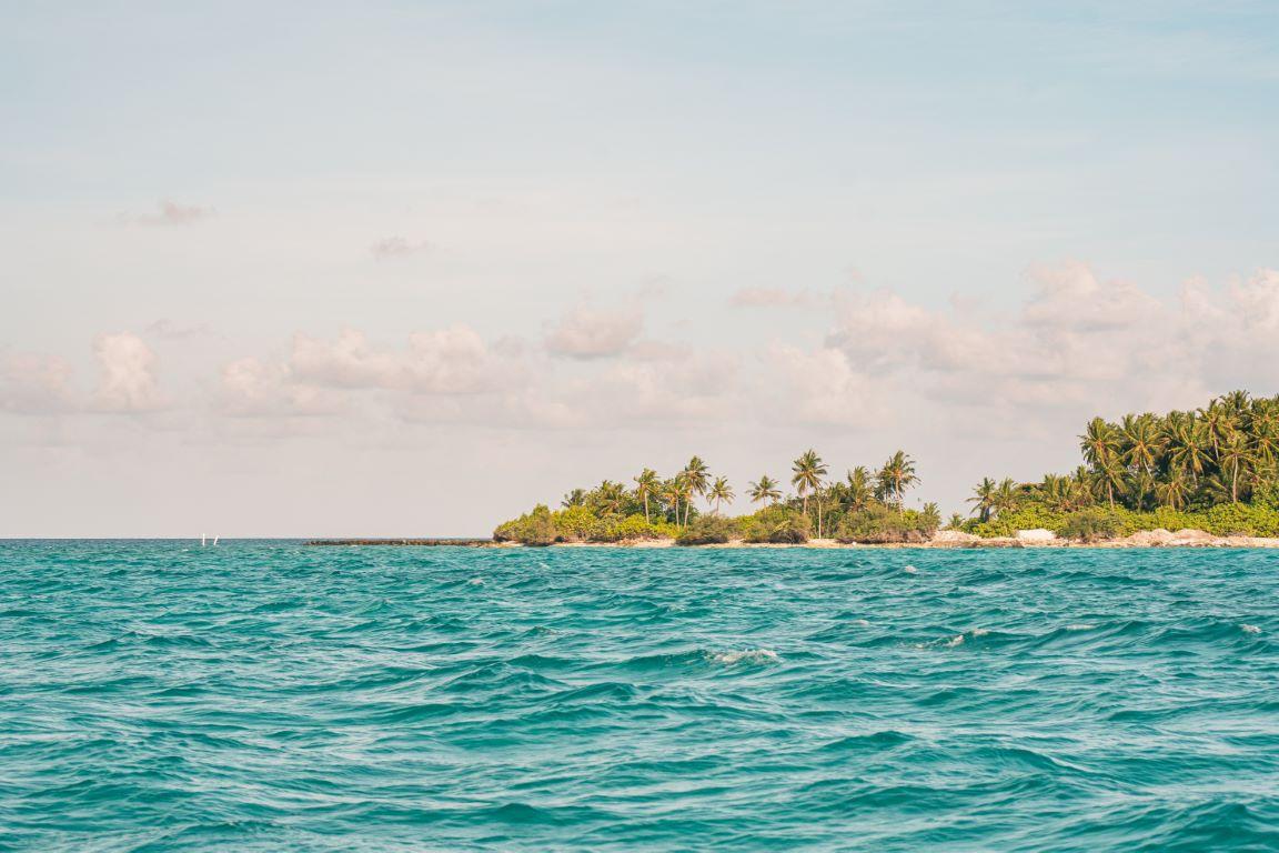 nautilus-maldives-day3-051-20200825-(c)JohannesRadlwimmer (Mittel)