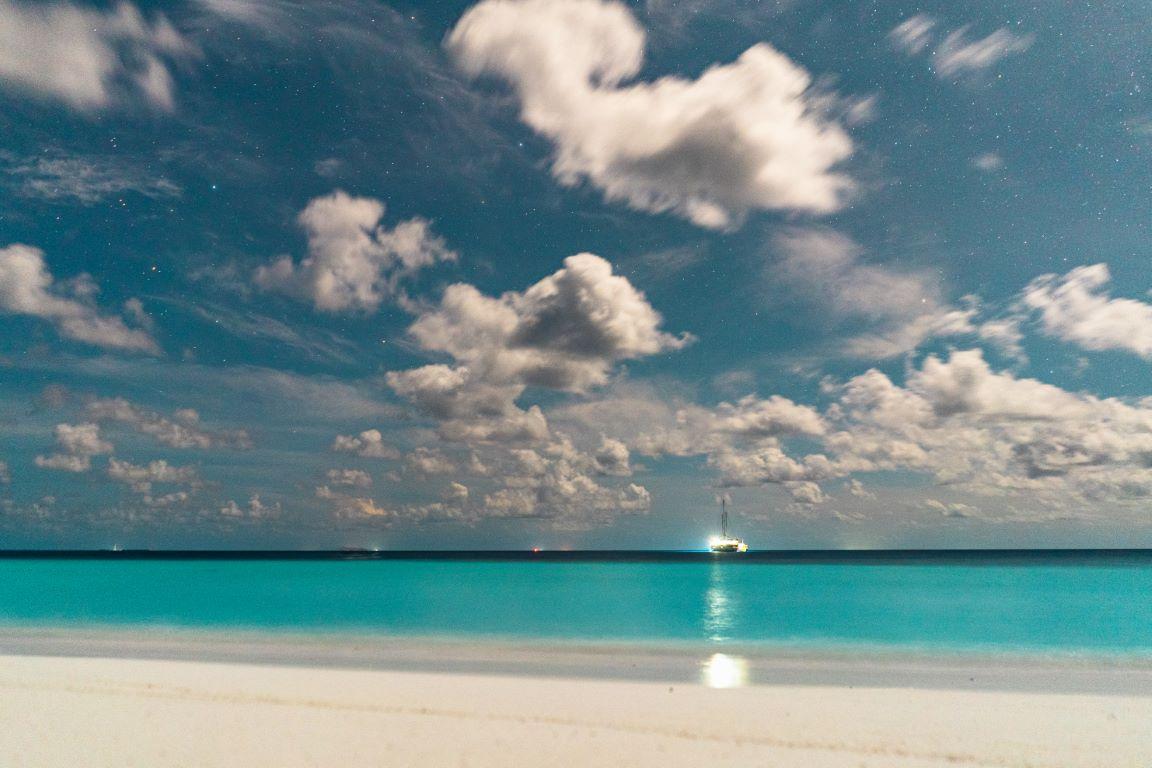 nautilus-maldives-day4-041-20200826-(c)JohannesRadlwimmer (Mittel)