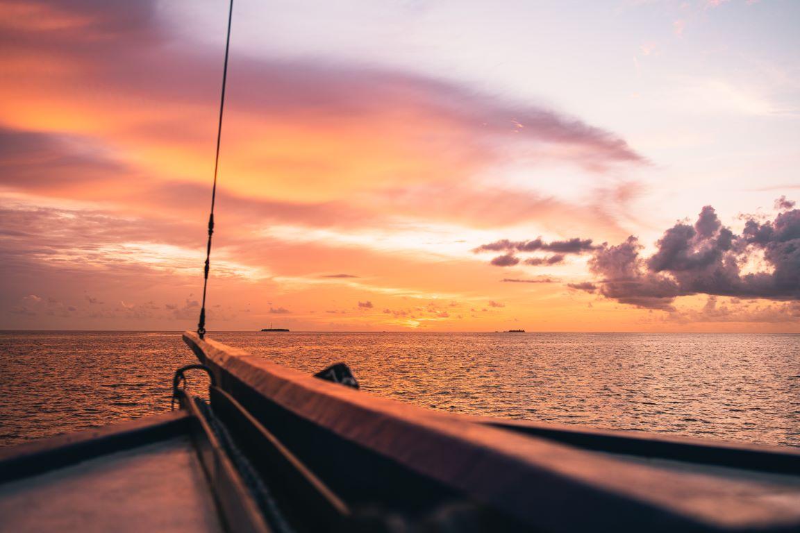 nautilus-maldives-day6-012-20200828-(c)JohannesRadlwimmer (Mittel)