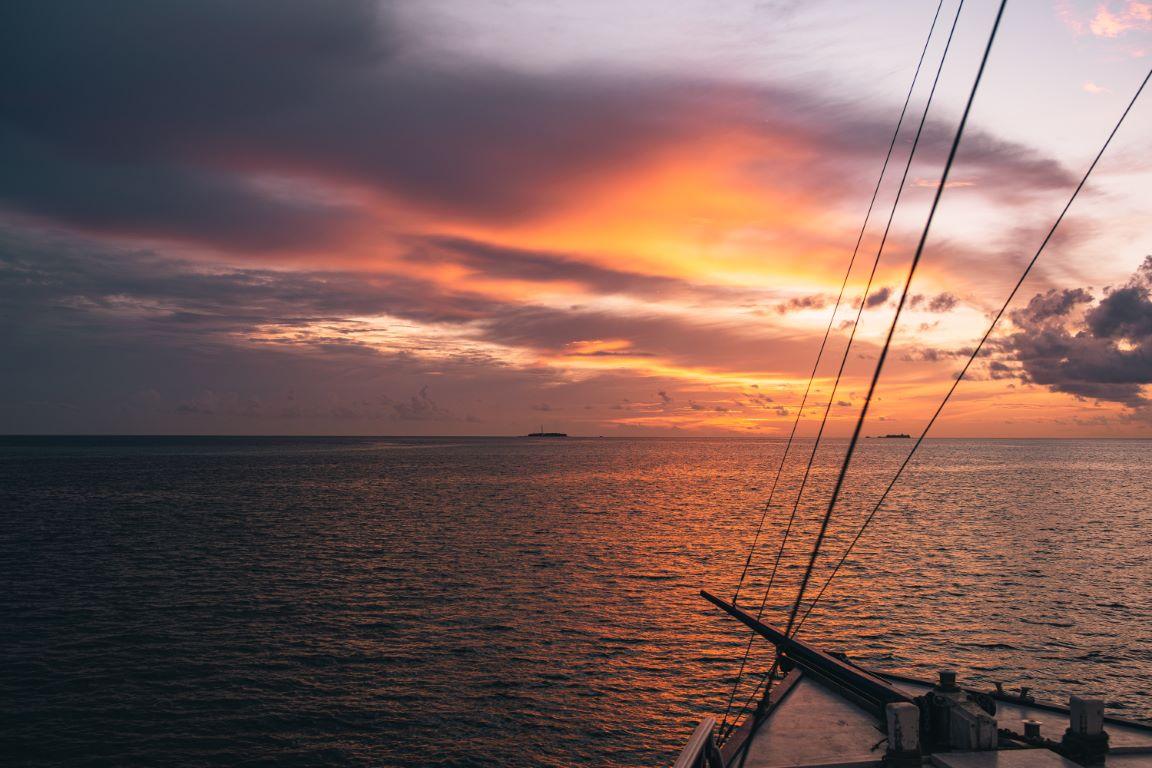 nautilus-maldives-day6-014-20200828-(c)JohannesRadlwimmer (Mittel)